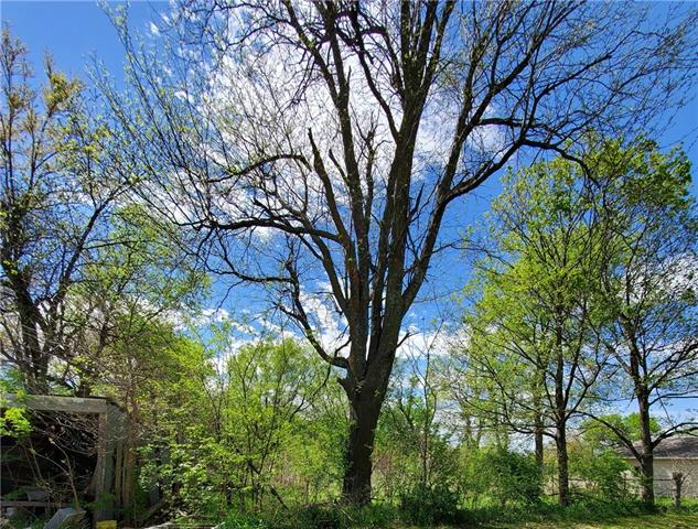 114 N 12th Street Property Photo - Hiawatha, KS real estate listing