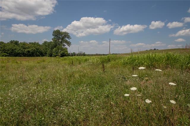 9960 Shach Creek Road Property Photo
