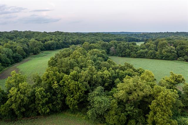 Hoellering Circle Property Photo 19
