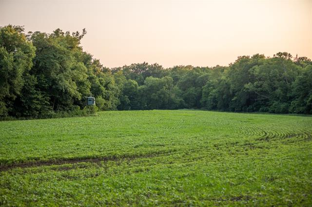 Hoellering Circle Property Photo 22