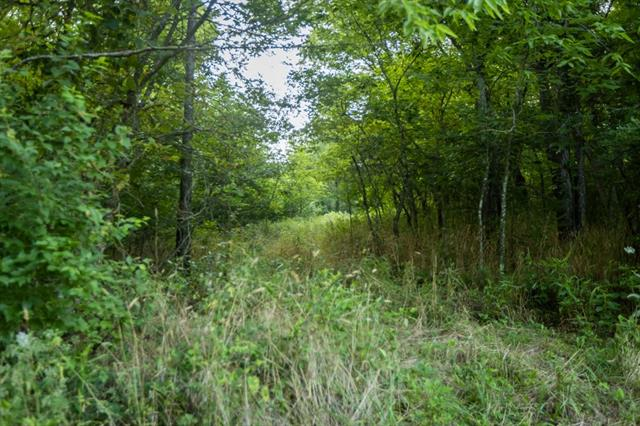 Hoellering Circle Property Photo 38