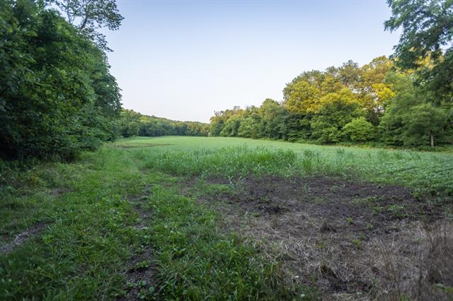 Hoellering Circle Property Photo 39