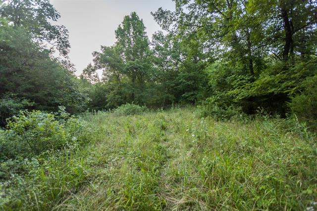 Hoellering Circle Property Photo 45