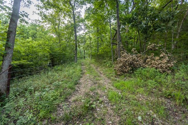 Hoellering Circle Property Photo 46