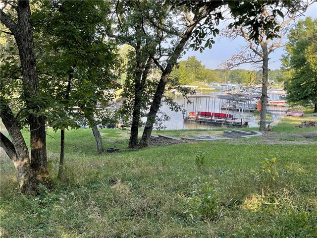 Lot 1220 Lake Viking Terrace Property Photo