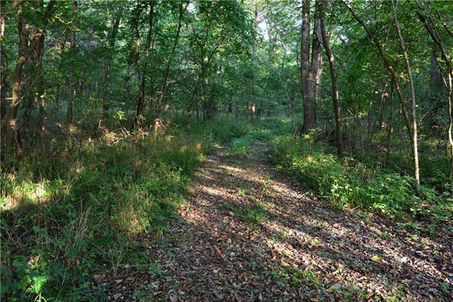 100 Acres M/l Ivory Avenue Property Photo