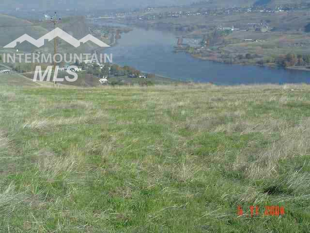 1730 River Canyon Drive Property Photo - Clarkston, WA real estate listing