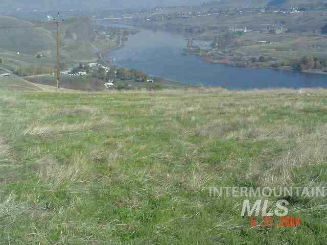 1771 RIVER CANYON DR Property Photo - Clarkston, WA real estate listing