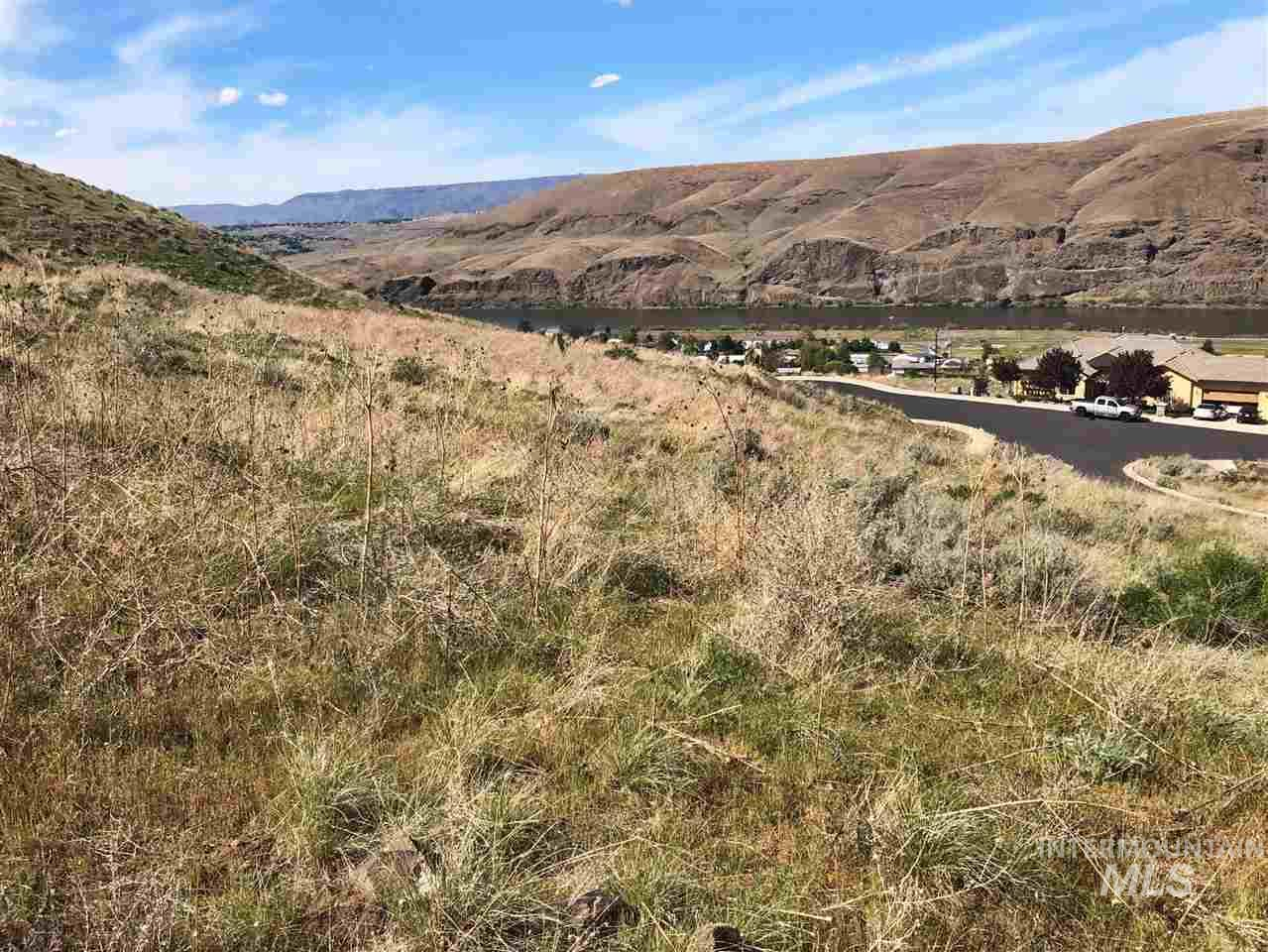 700 Swantz Drive Lot 18 Property Photo - Asotin, WA real estate listing