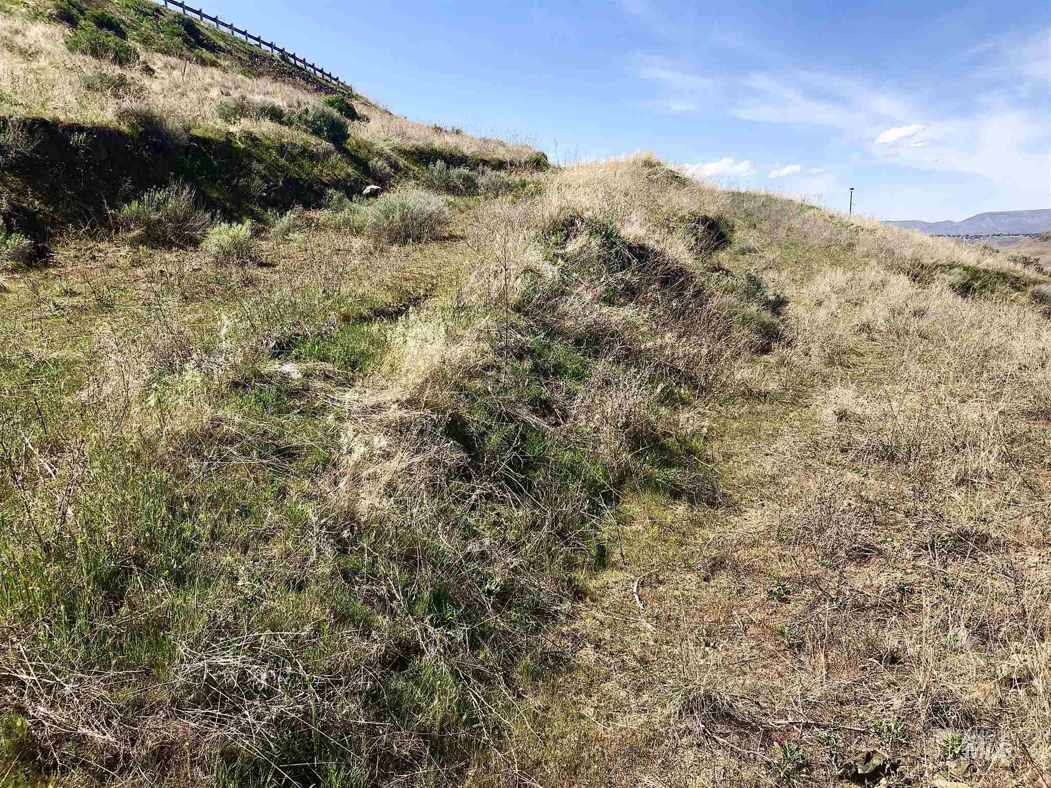 751 Swantz Drive Lot 23 Property Photo - Asotin, WA real estate listing