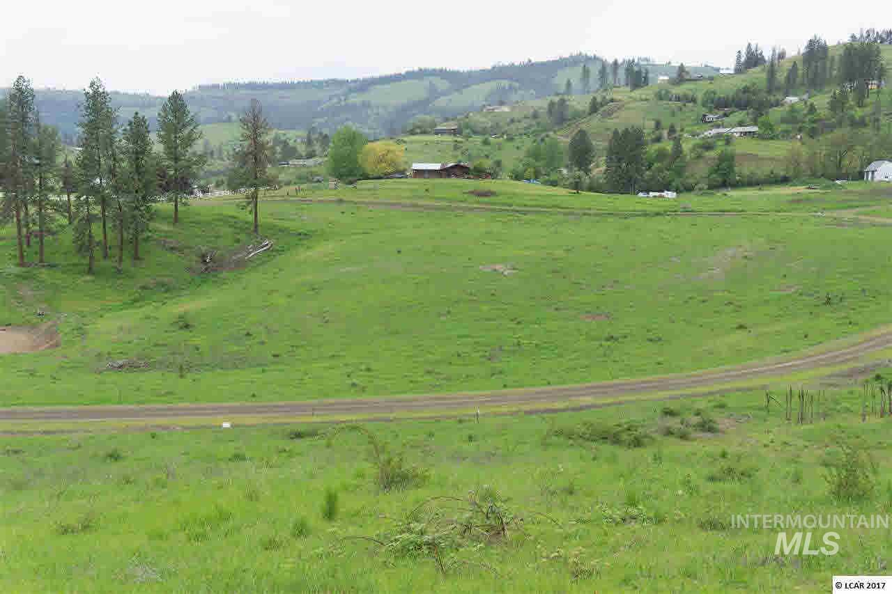 lot 10 River View Estates Property Photo - Kamiah, ID real estate listing