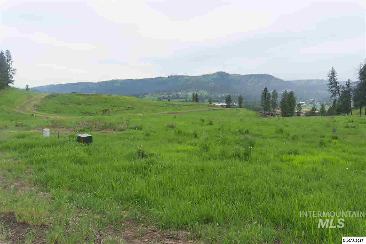 lot 16 River View Estates Property Photo - Kamiah, ID real estate listing