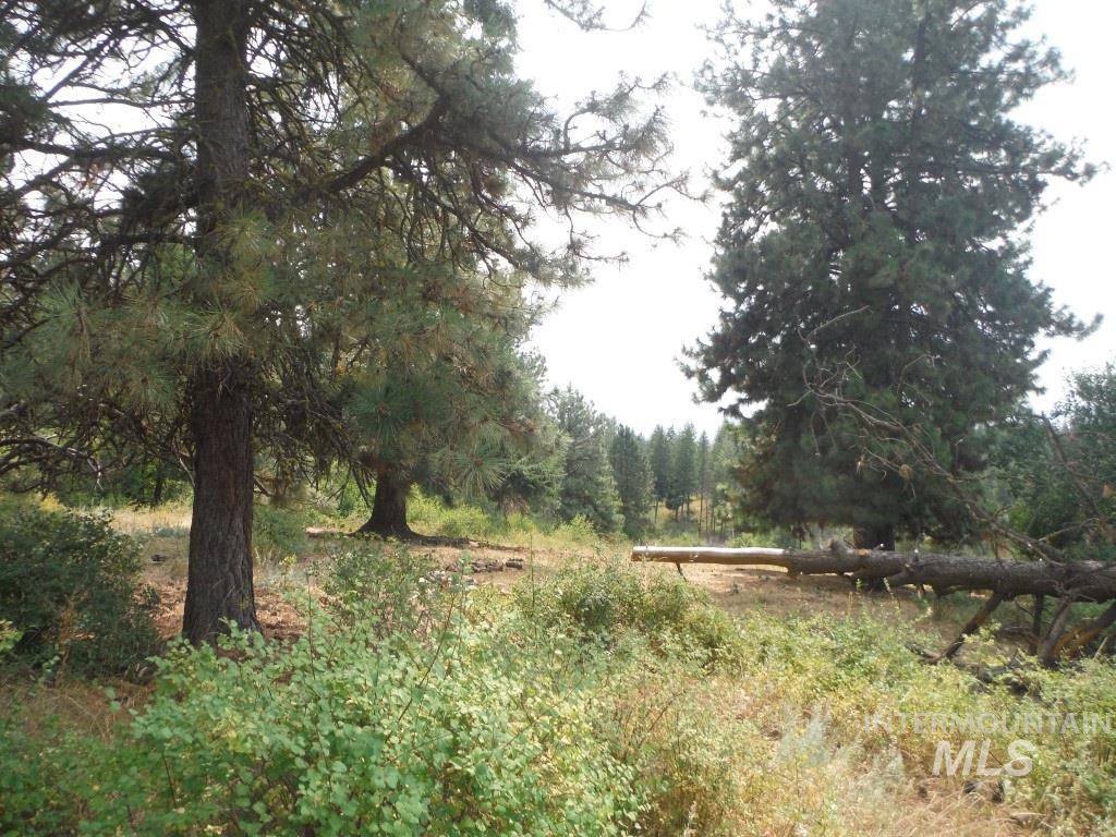 62 Little Fall Creek Property Photo