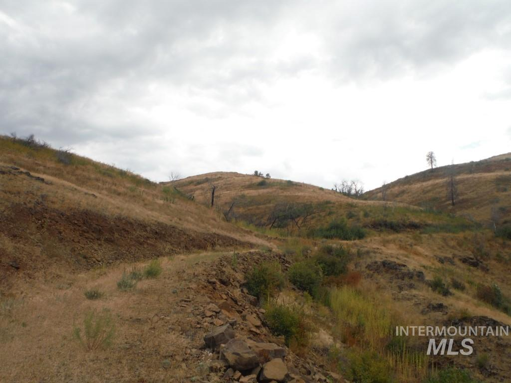 Lot 2 Middle Fork Rd Property Photo - Council, ID real estate listing