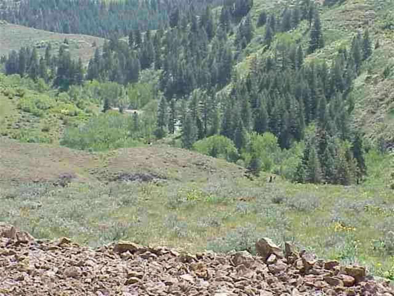Lot 4 Middle Fork Rd Property Photo - Council, ID real estate listing
