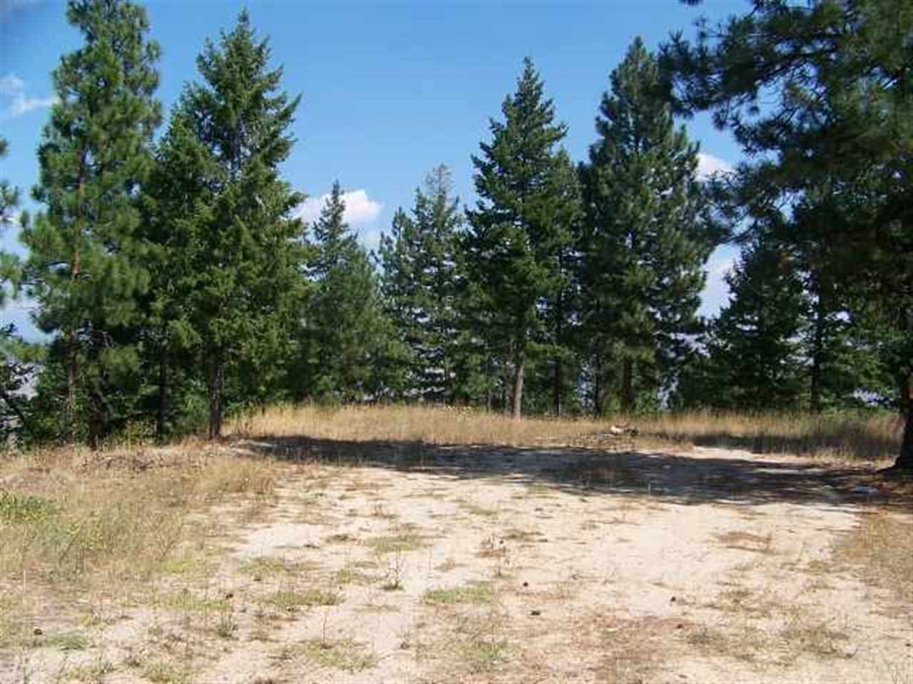 Lot 4 Wilderness Ridge Property Photo - Boise, ID real estate listing