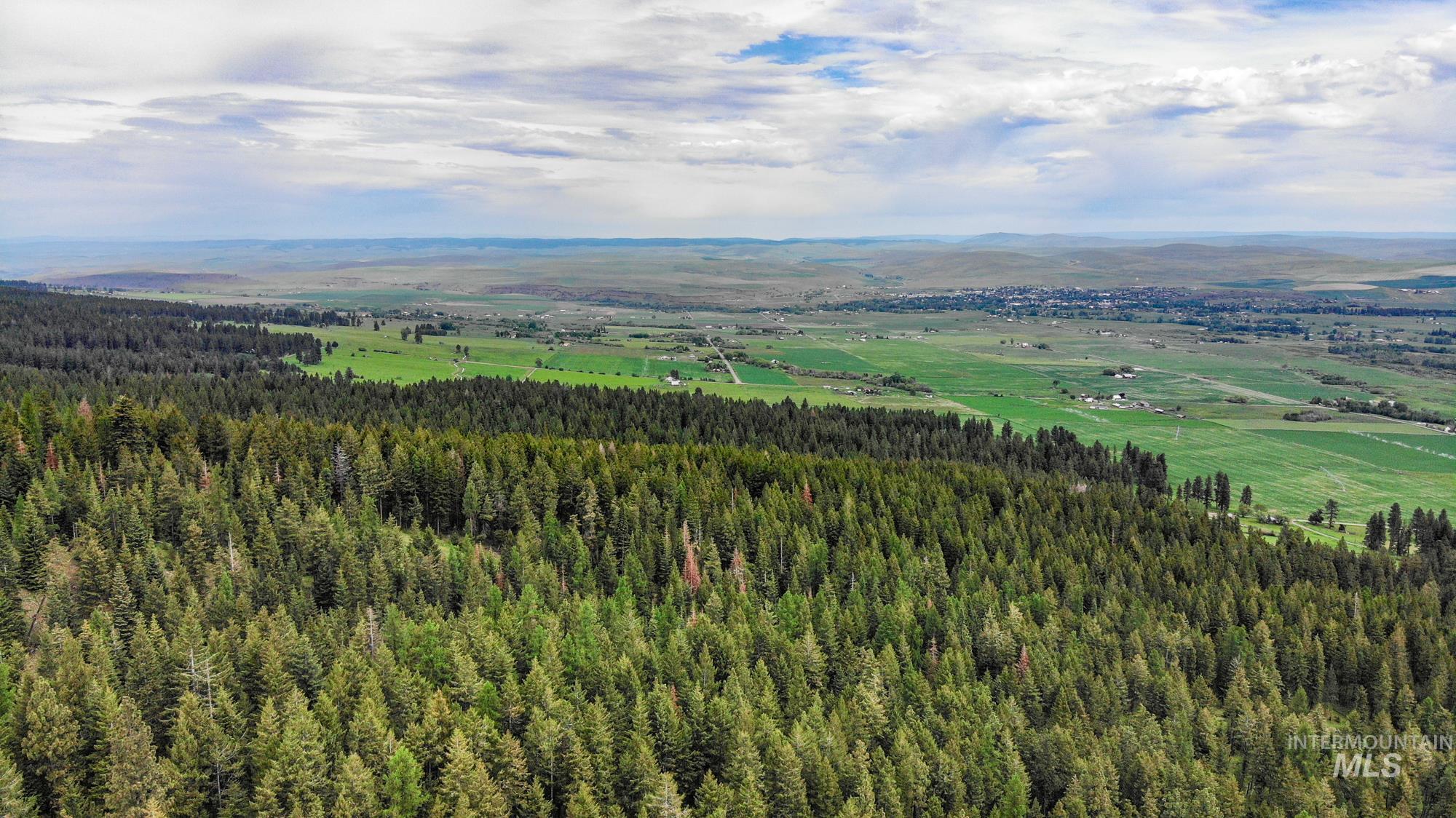0 Scotch Creek Rd Property Photo - Enterprise, OR real estate listing