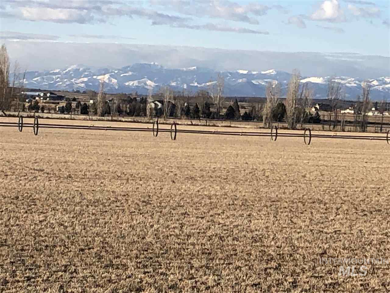 4199 Deer Flat Road Property Photo 5