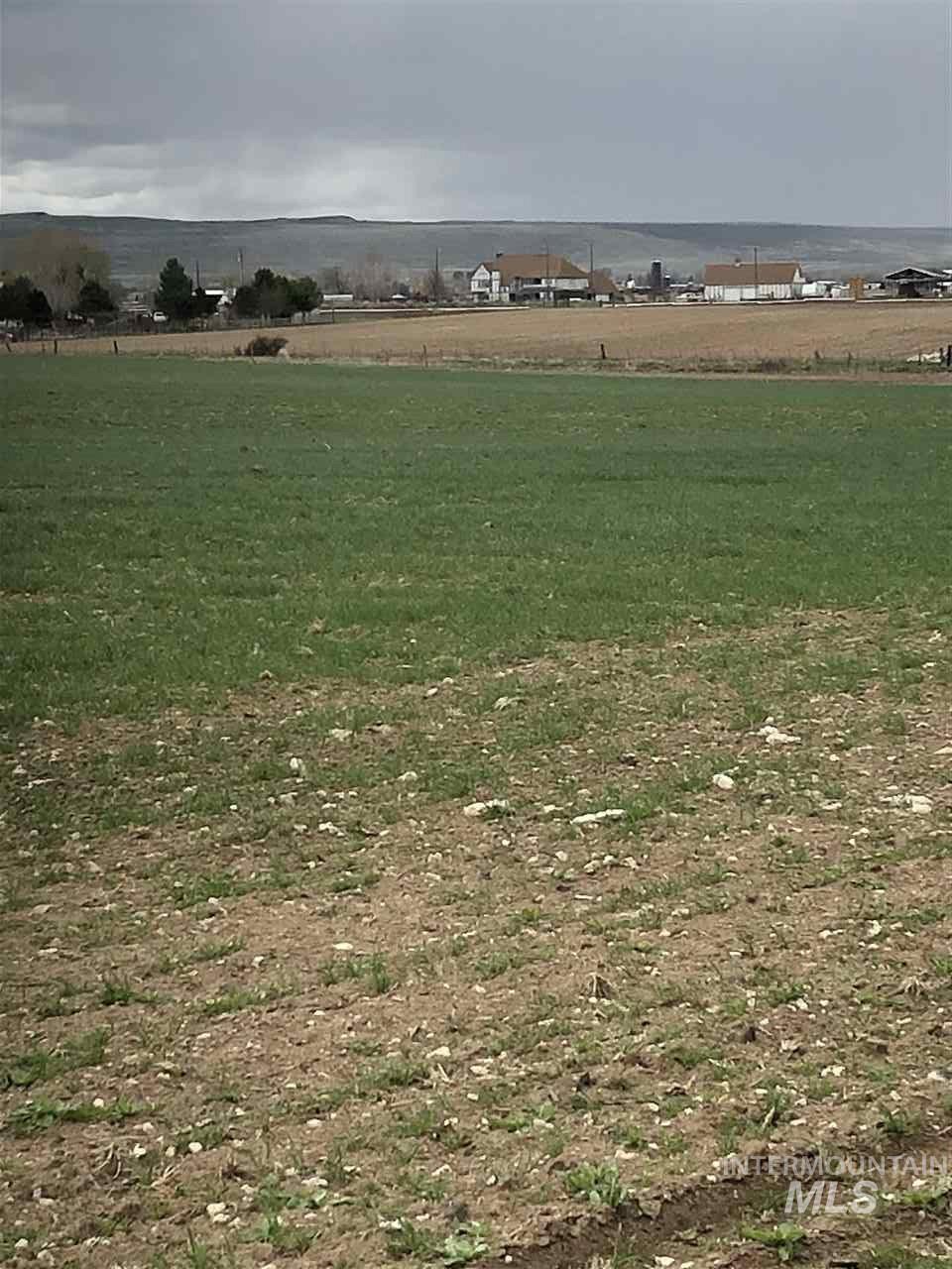 4199 Deer Flat Road Property Photo 7