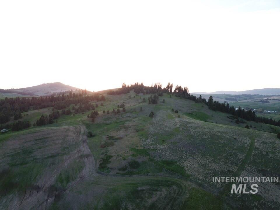TBD Genesee Troy Road Property Photo - Moscow, ID real estate listing