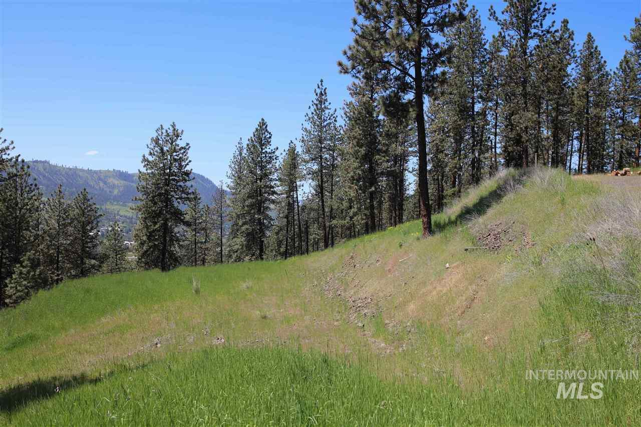TBD Winchester Lane Property Photo - Kamiah, ID real estate listing