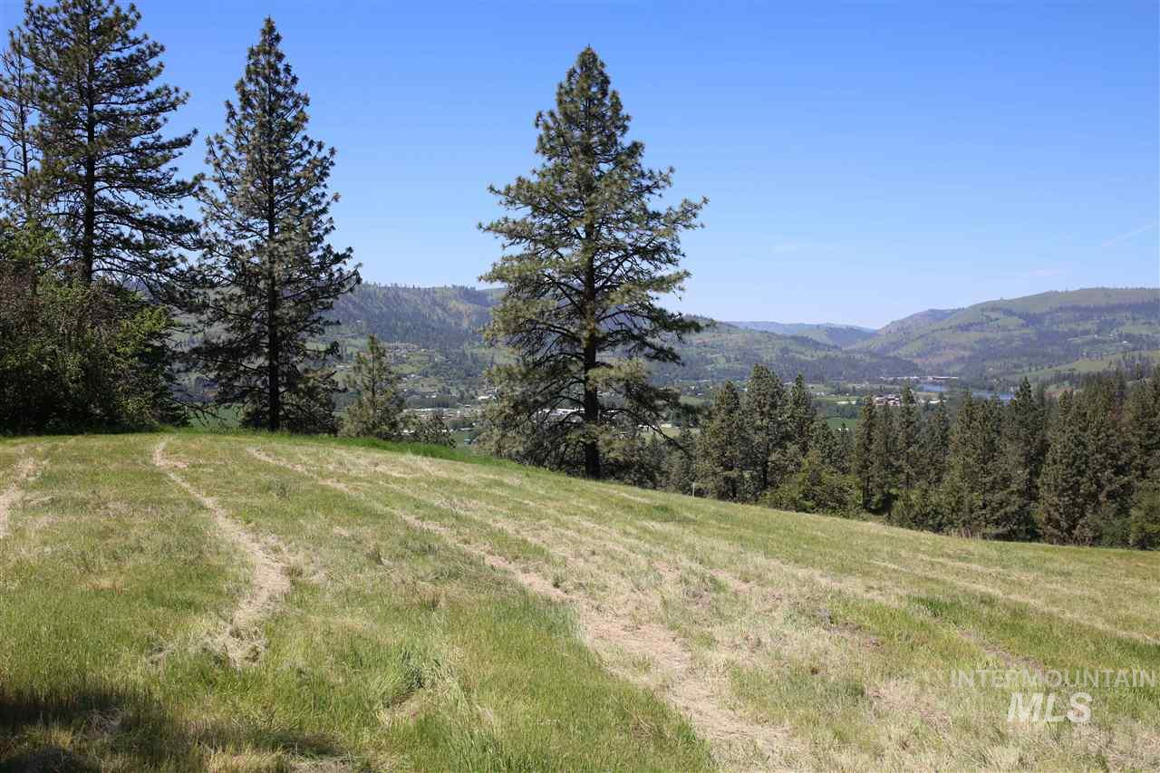 lot 13 Remington Hills Property Photo - Kamiah, ID real estate listing