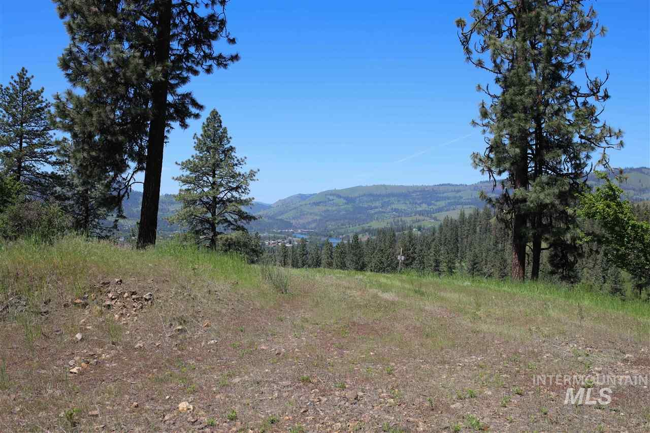 lot 15 Remington Hills Property Photo - Kamiah, ID real estate listing
