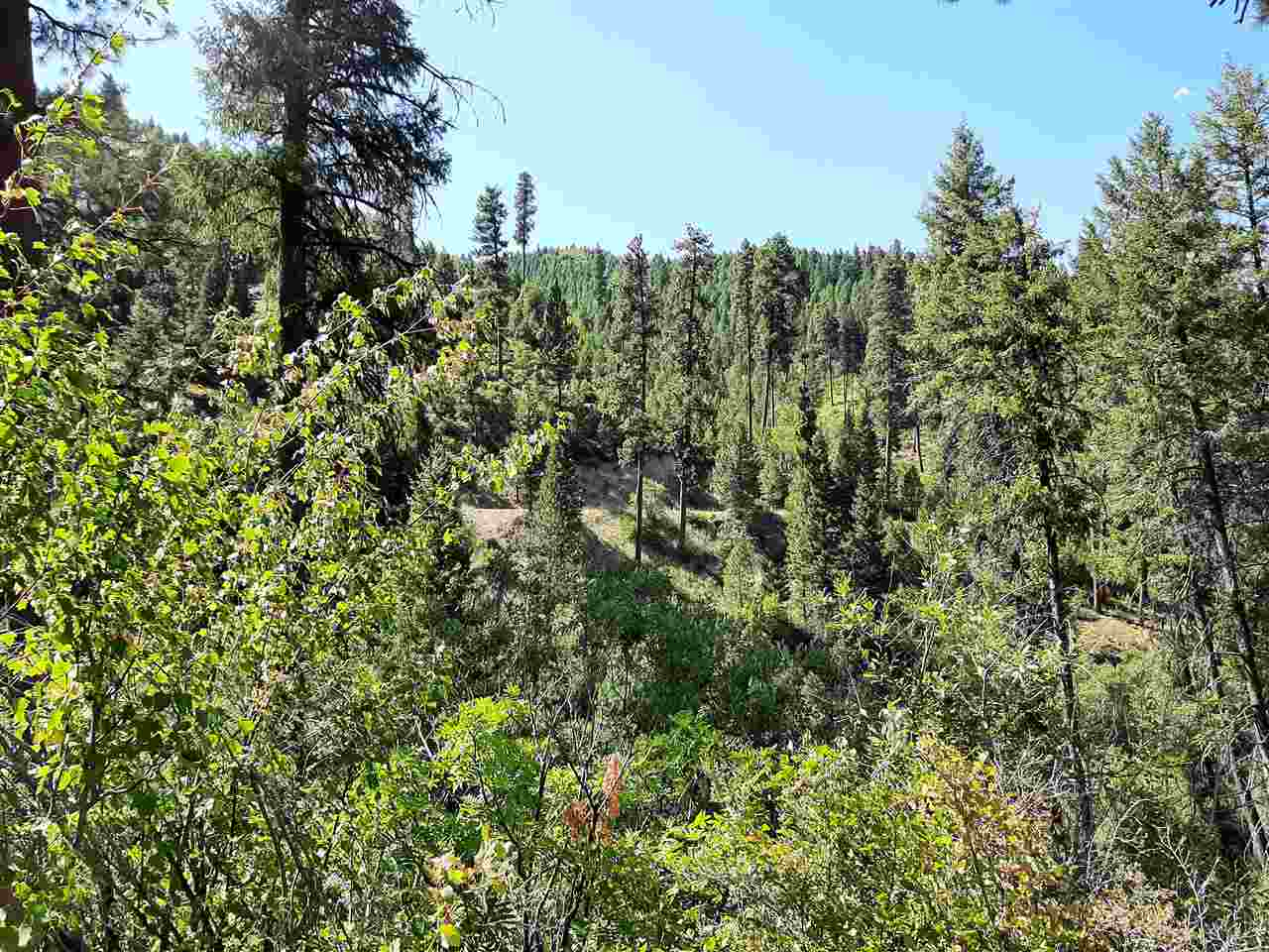 Archie Creek Property Photo - Lowman, ID real estate listing