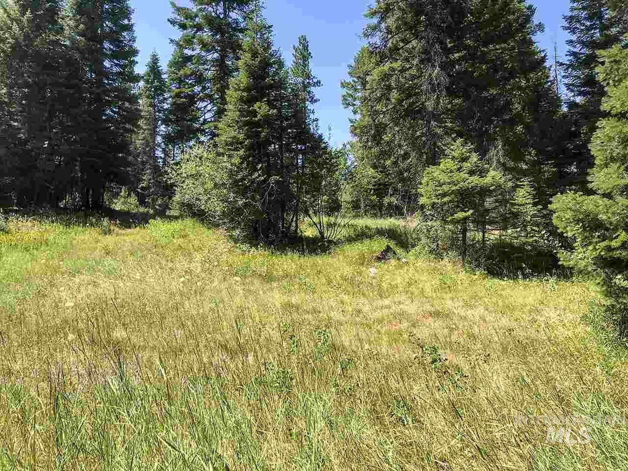TBD Clements RD Property Photo - McCall, ID real estate listing