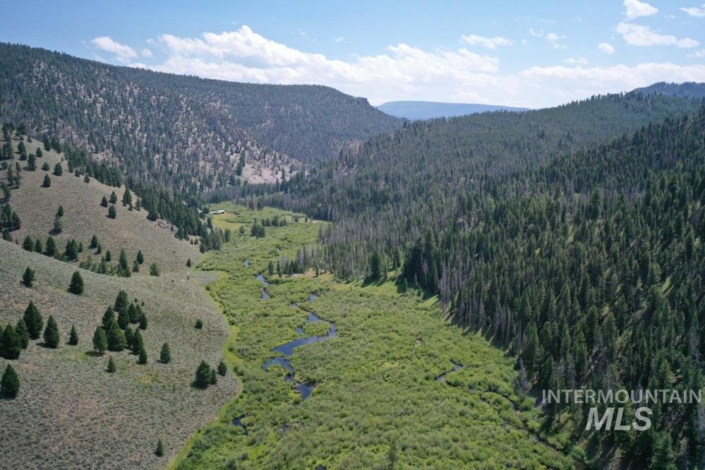 TBD National Forest Rd #059 Property Photo - Shoup, ID real estate listing