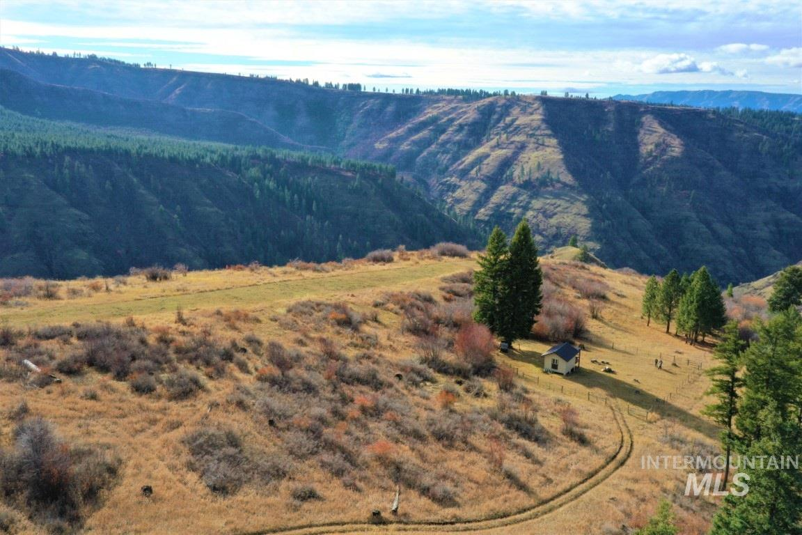 Pinnacle Ridge Trail #325 Property Photo - Grangeville, ID real estate listing