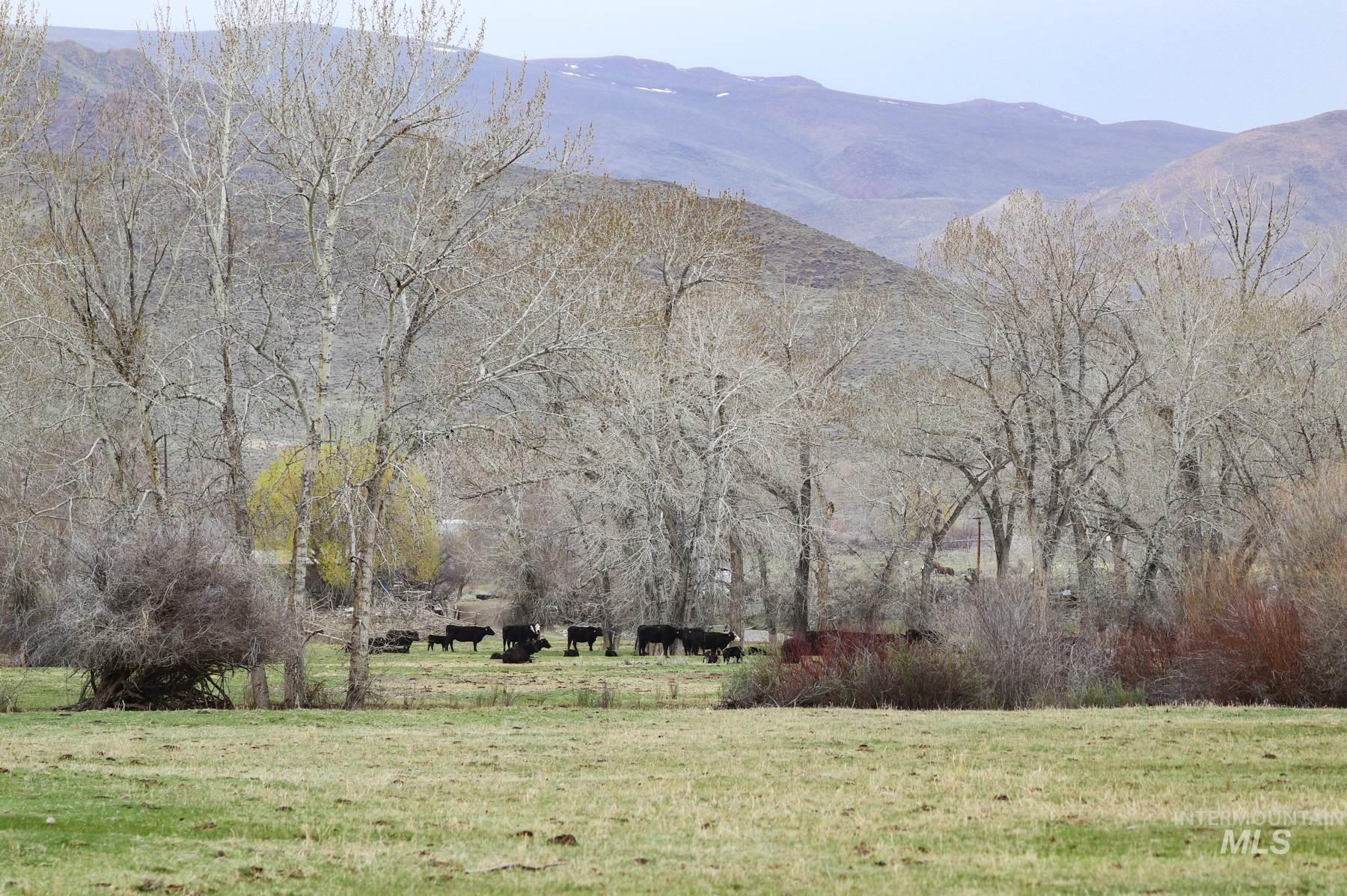 389 Wrangler Property Photo