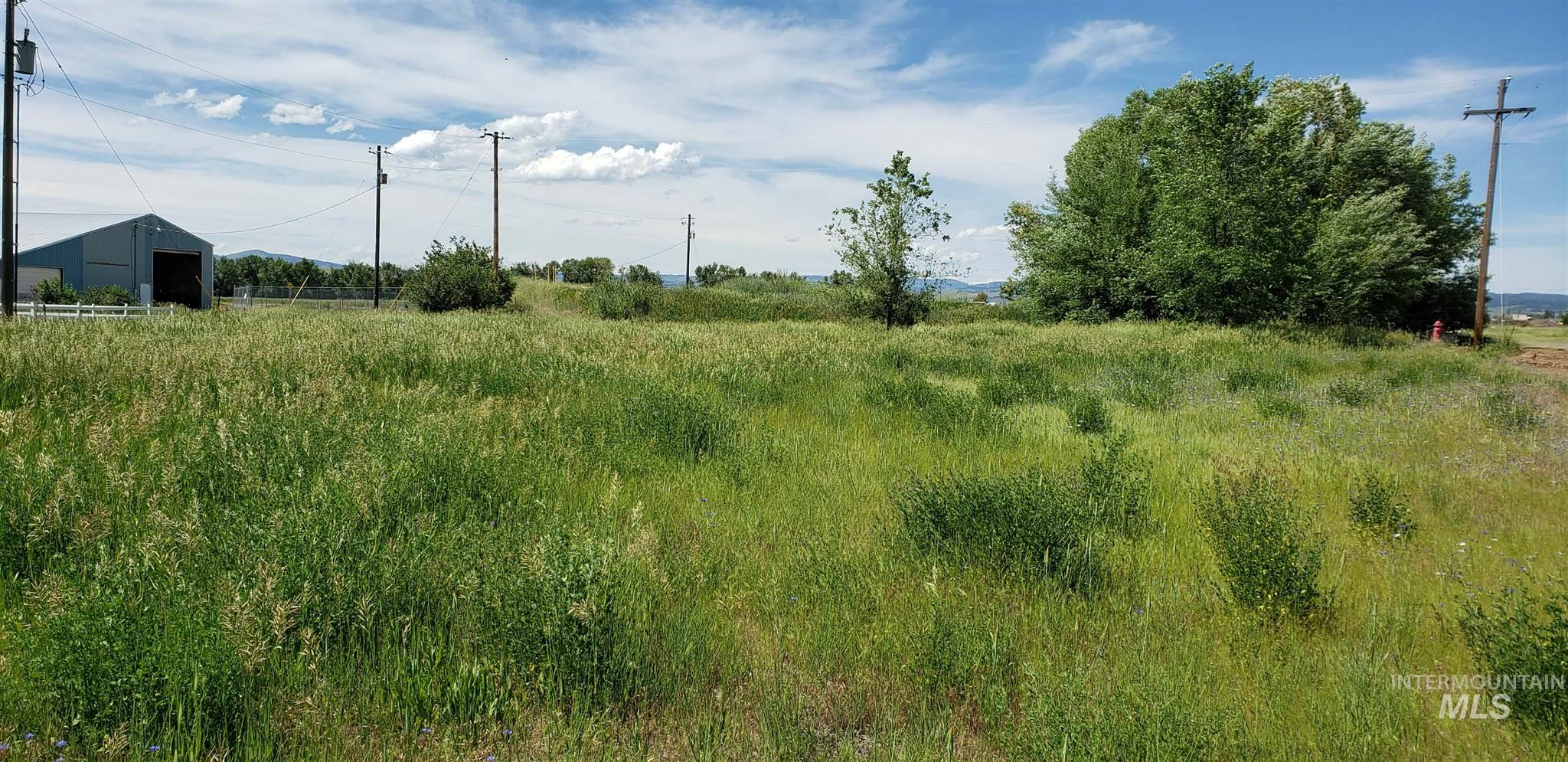 Lot 2 Main Street Property Photo - Council, ID real estate listing