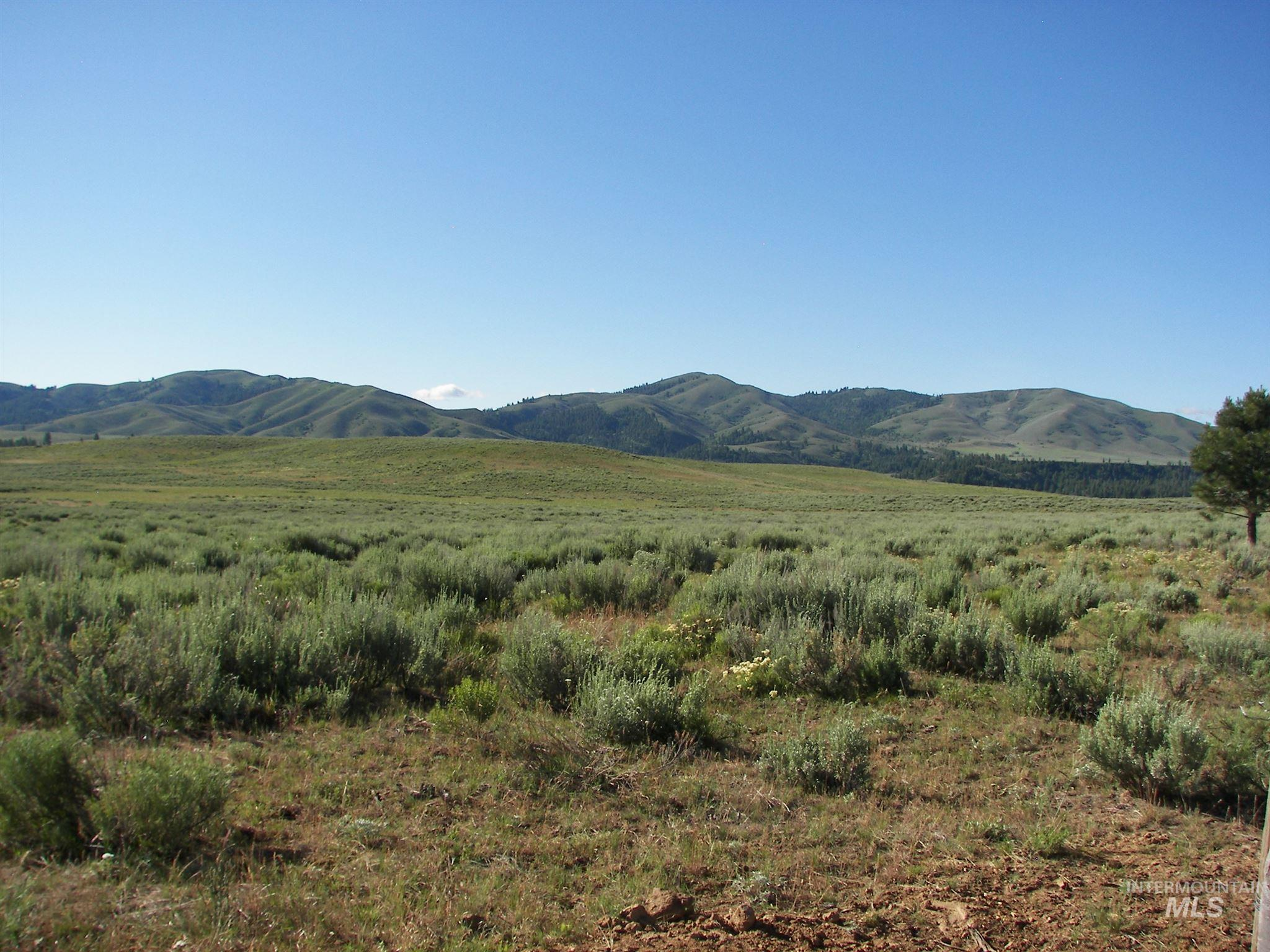 0 S Lake Creek Road Property Photo - Pine, ID real estate listing