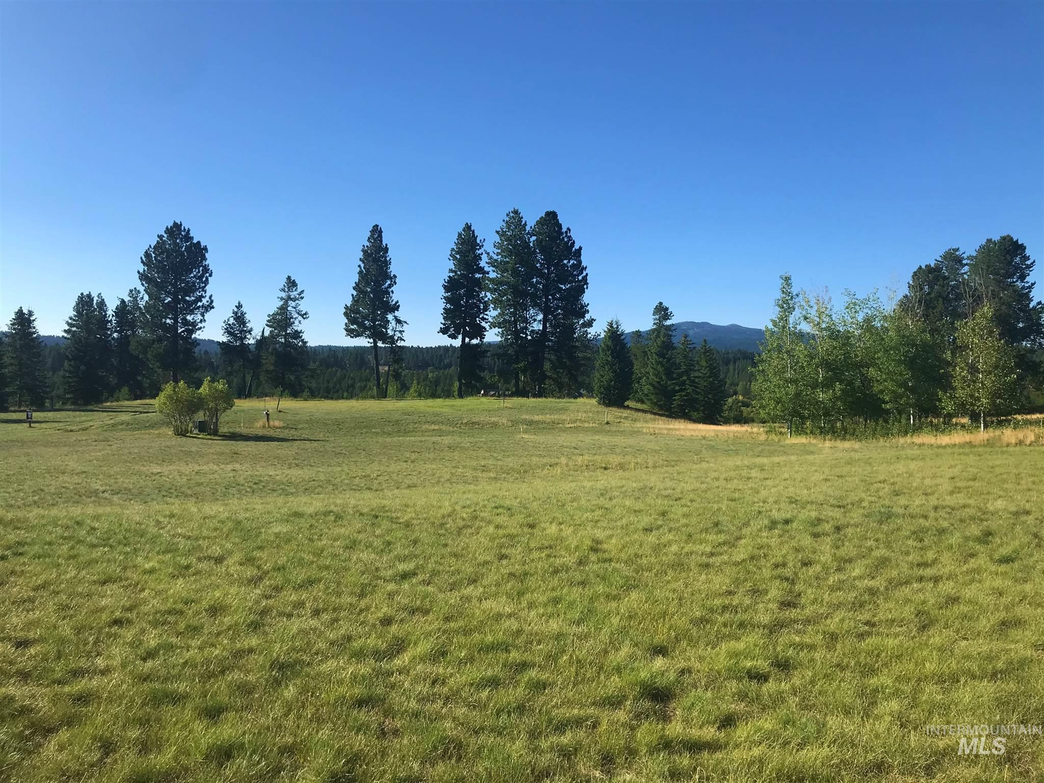 Lot 2 Saddle Court Property Photo - McCall, ID real estate listing