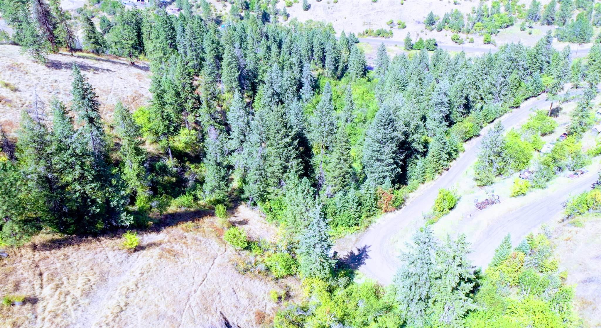 Lot 5 & 6 Elk Meadows Subdivision Property Photo - Kooskia, ID real estate listing