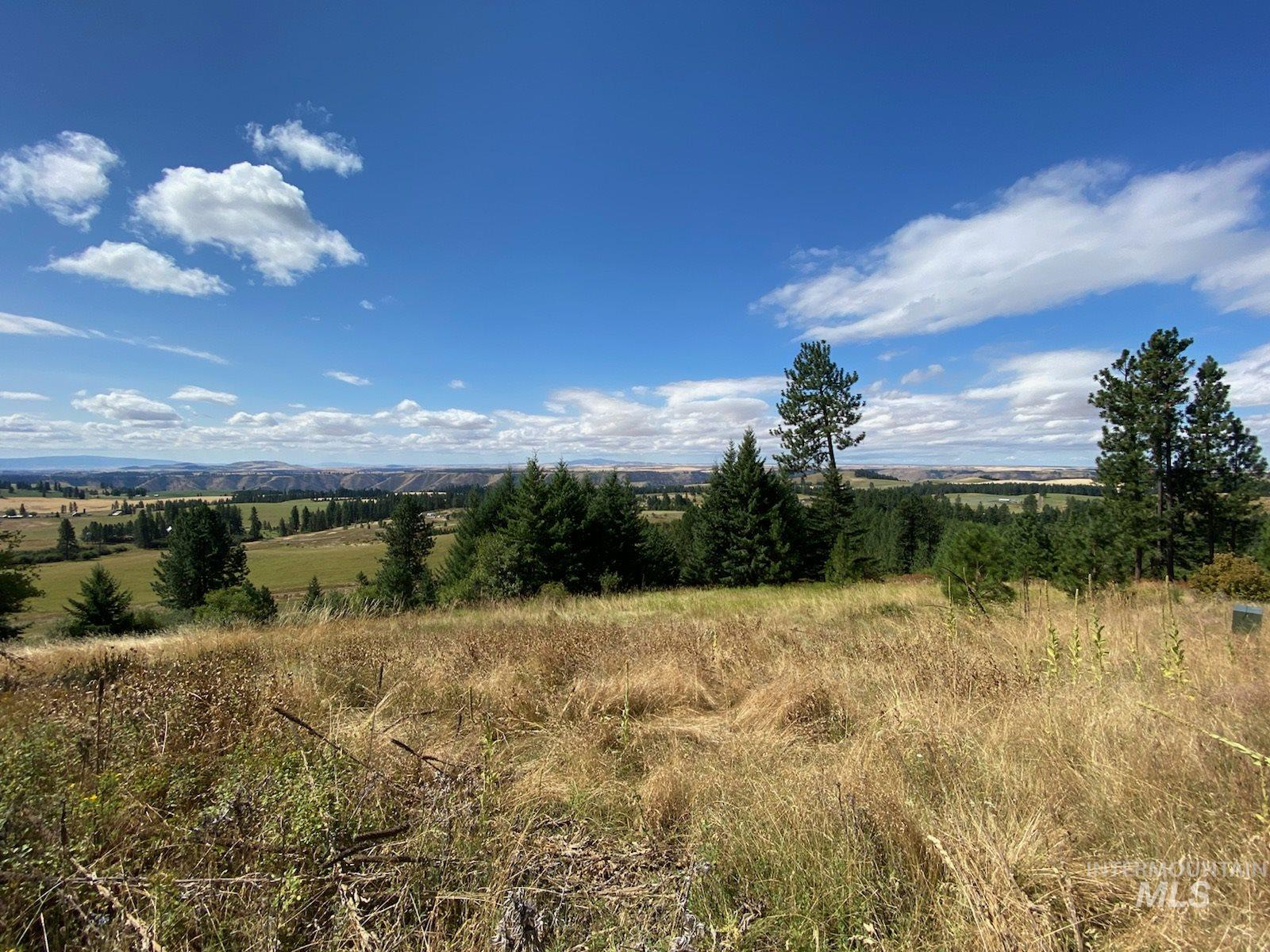 TBD Simler Rd Parcel 1 Property Photo - Kamiah, ID real estate listing