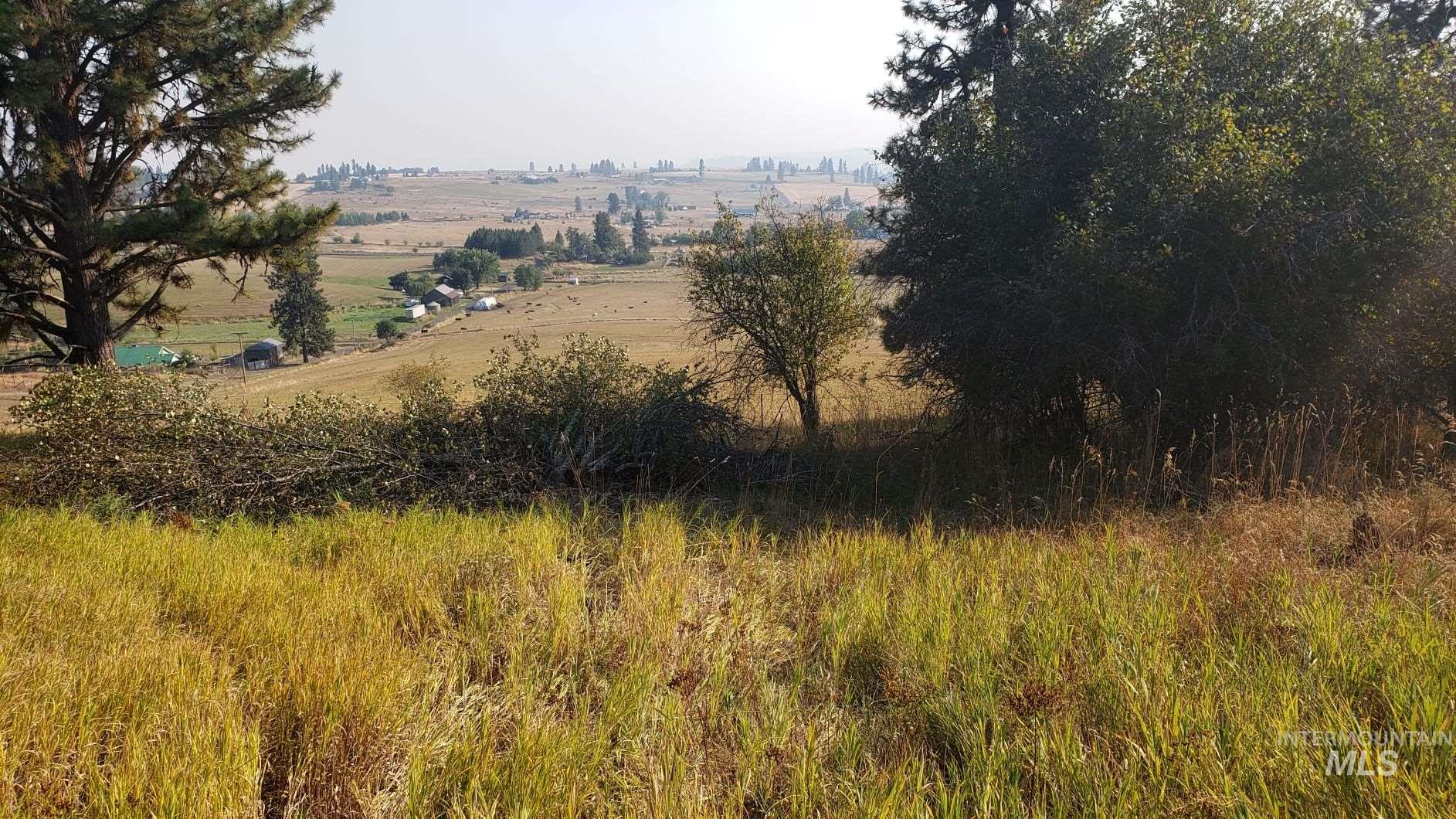 TBD Simler Rd Parcel 3 Property Photo - Kamiah, ID real estate listing