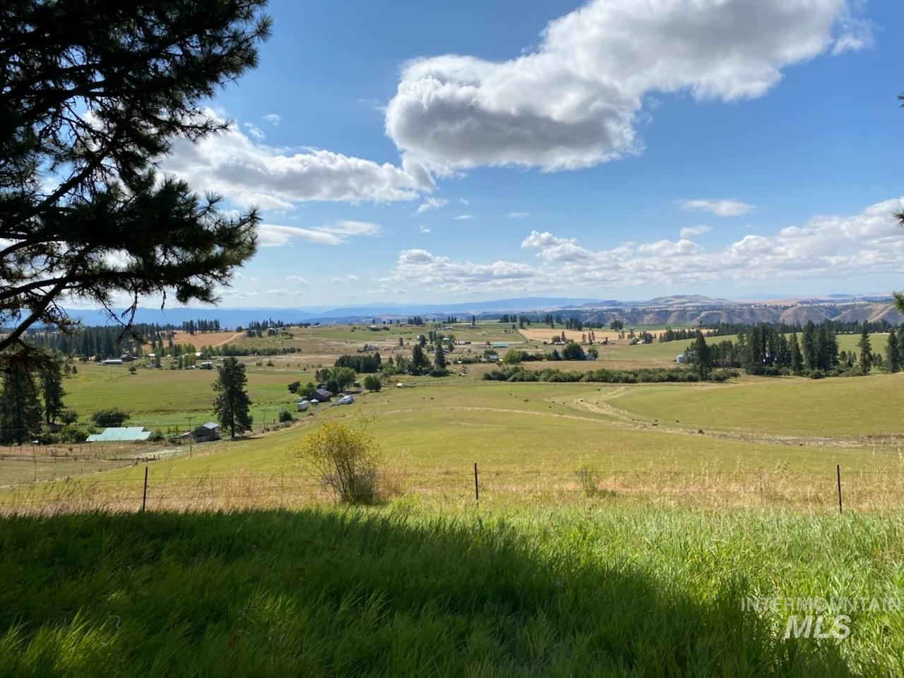 TBD Simler Rd Parcel 2 Property Photo - Kamiah, ID real estate listing