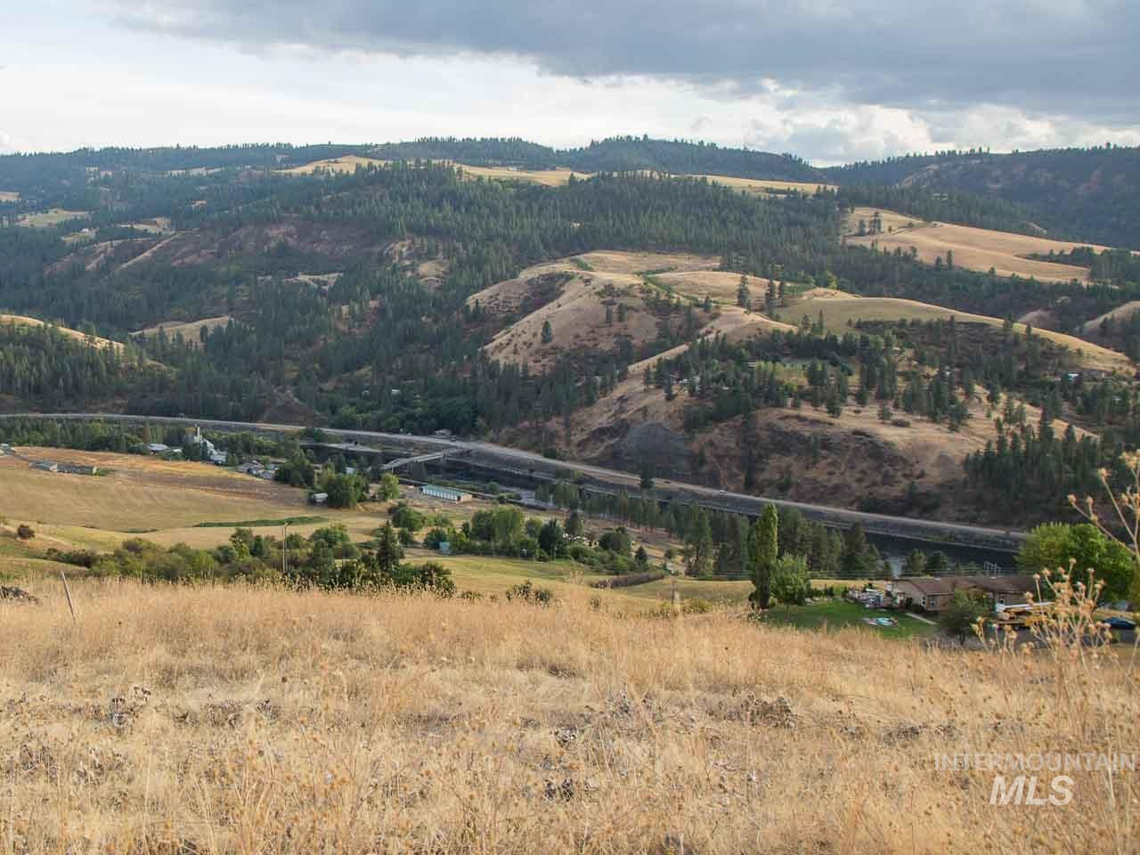 TBD River Road Parcel #3 Property Photo - Lenore, ID real estate listing