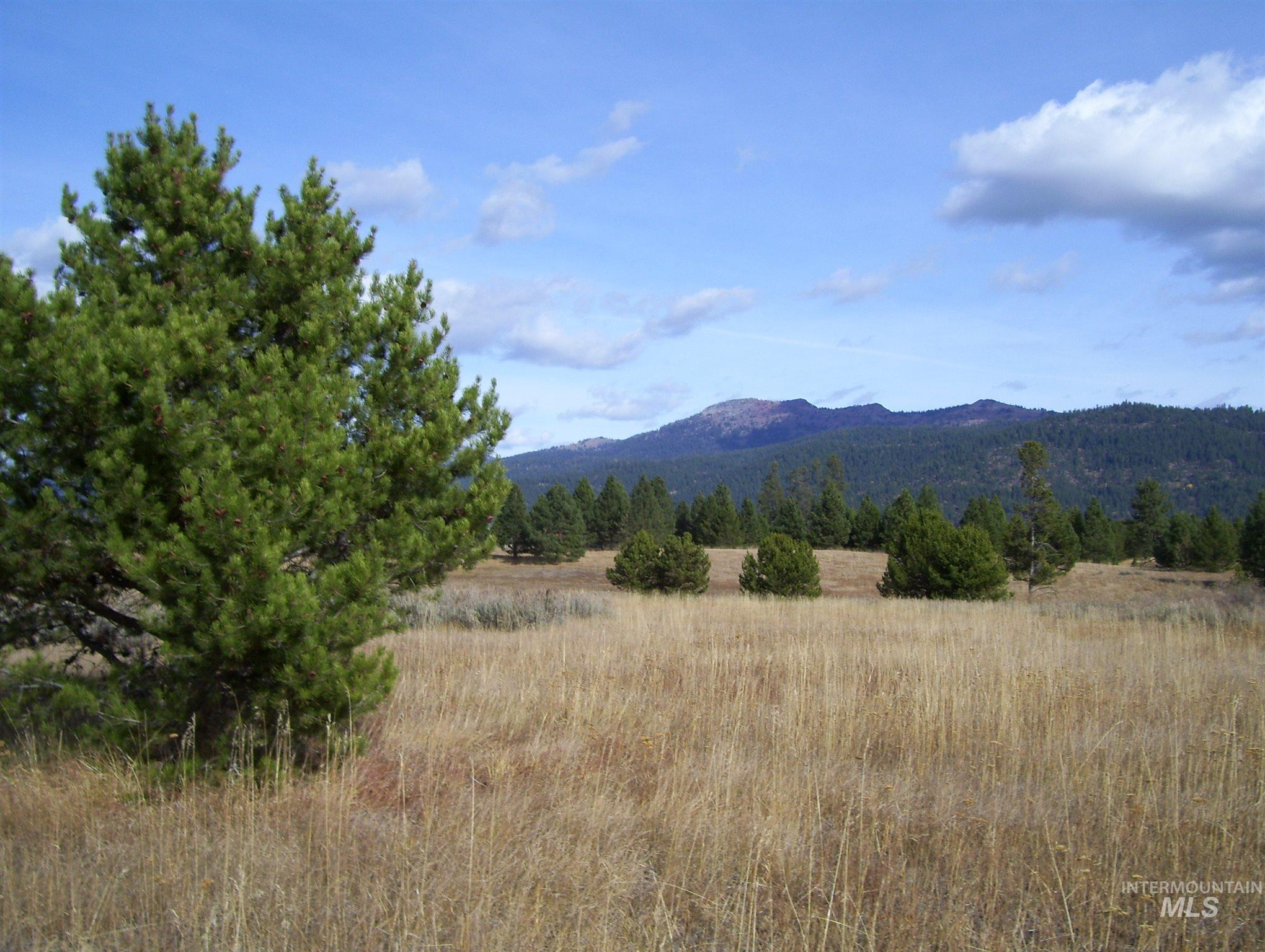 TBD Morris Ranch Road Property Photo - McCall, ID real estate listing