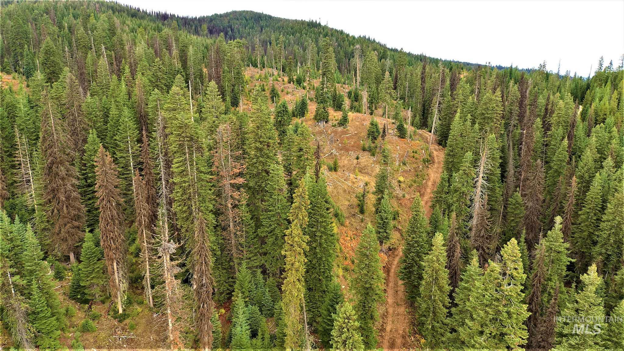 Tbd Elk Summit Properties Parcel 2 Property Photo