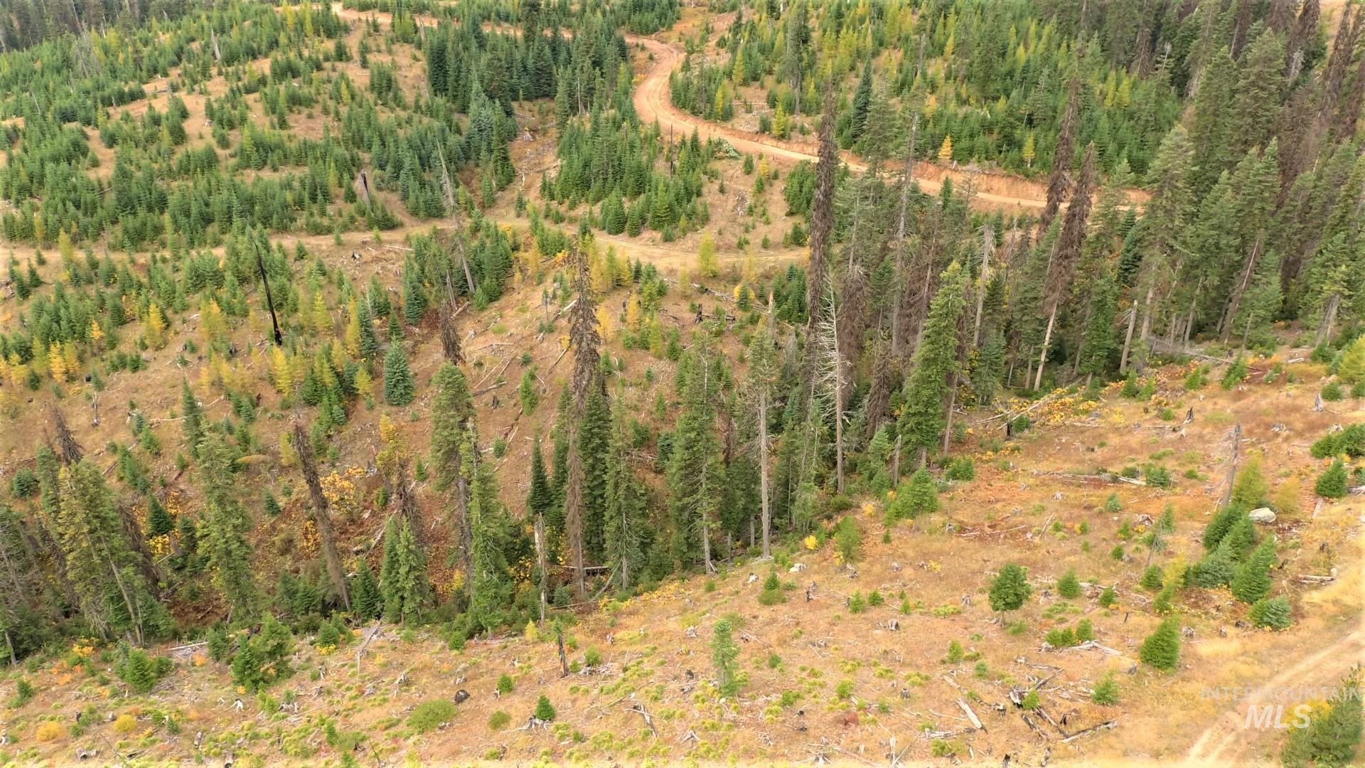 Tbd Elk Summit Properties Parcel 3 Property Photo