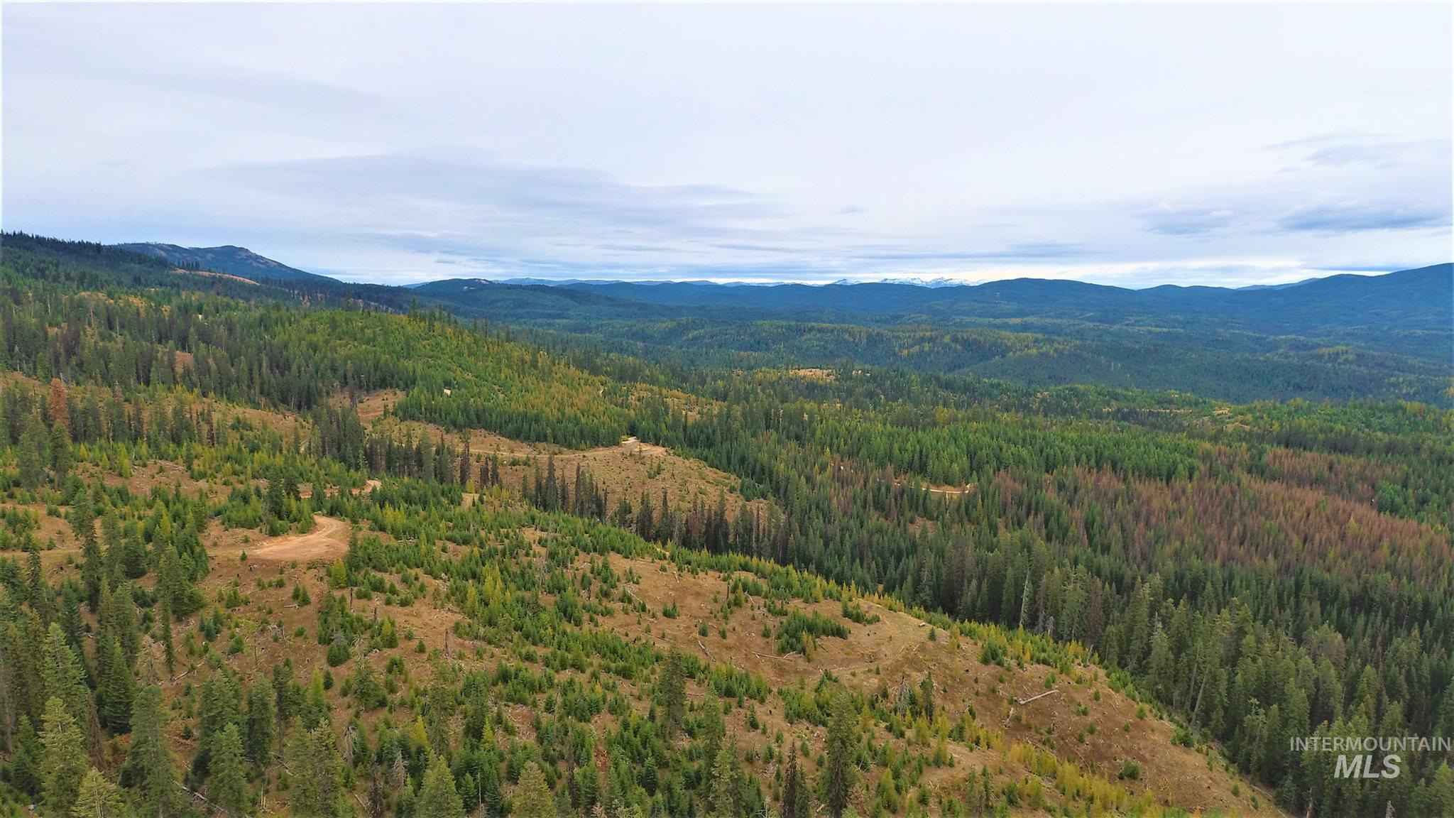 Tbd Parcel 4 Elk Summit Property Photo