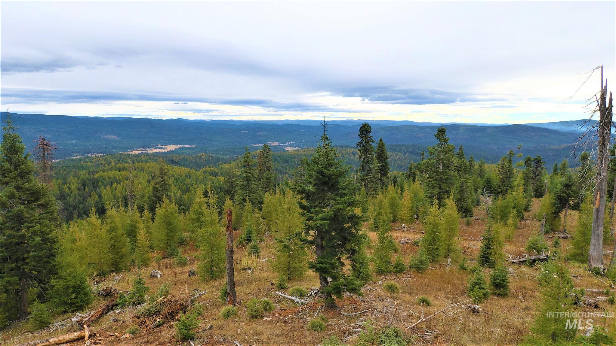 Tbd Elk Summit Properties Parcel 7 Property Photo