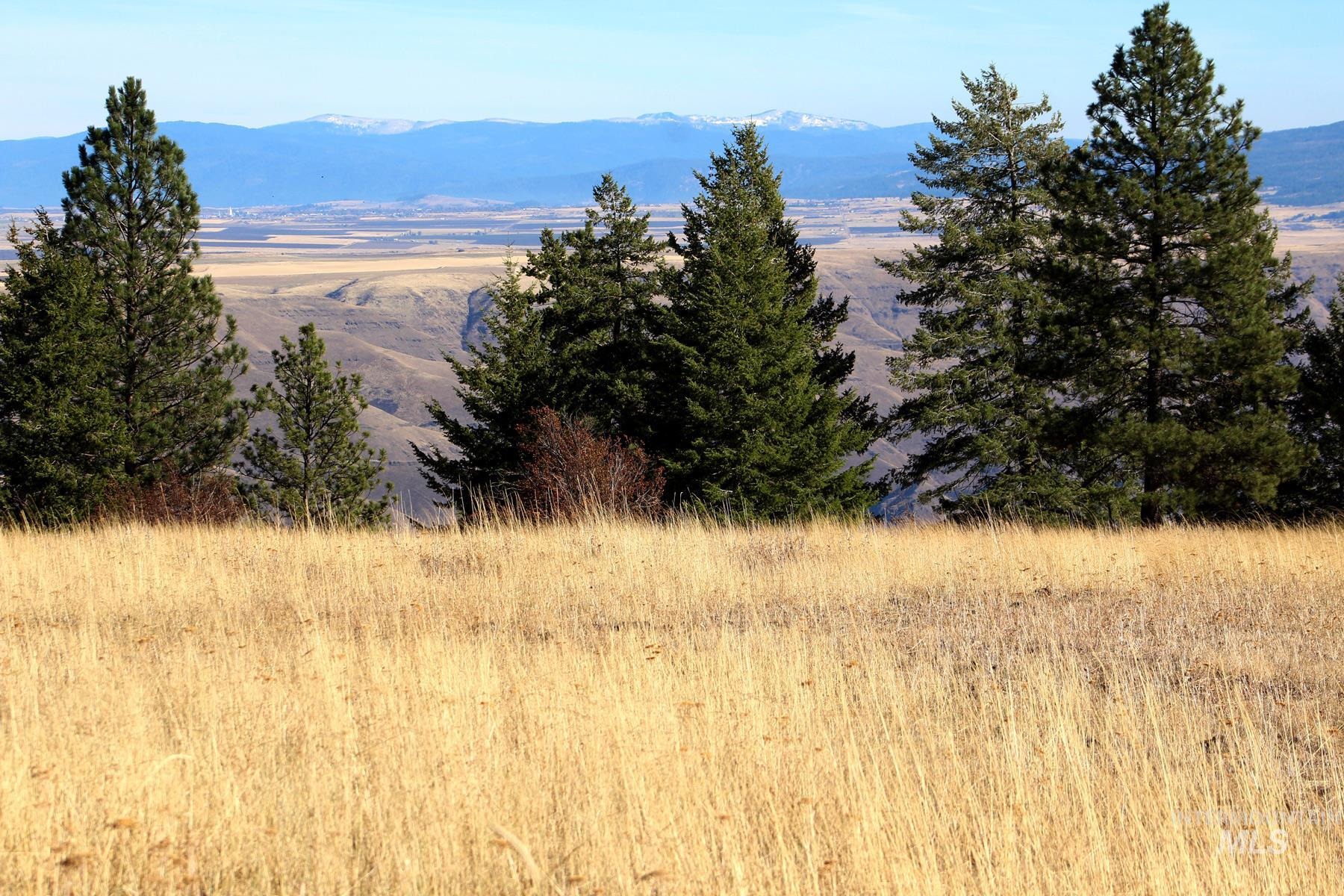 Prairie- Idaho County Real Estate Listings Main Image