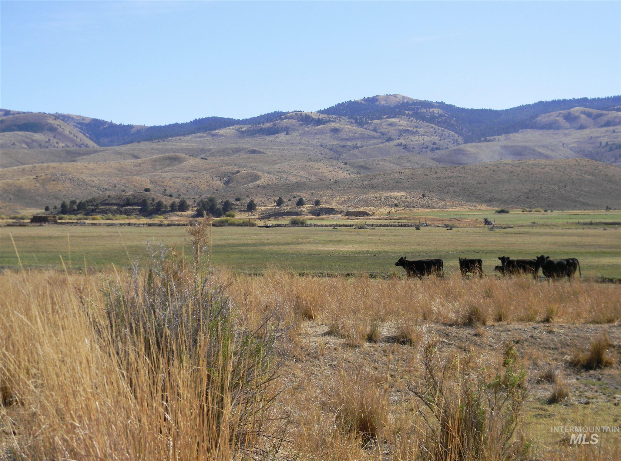 24252 HWY 245 Property Photo - Hereford, OR real estate listing