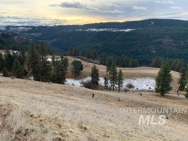 TBD Upper Fords Creek Rd. Property Photo - Orofino, ID real estate listing