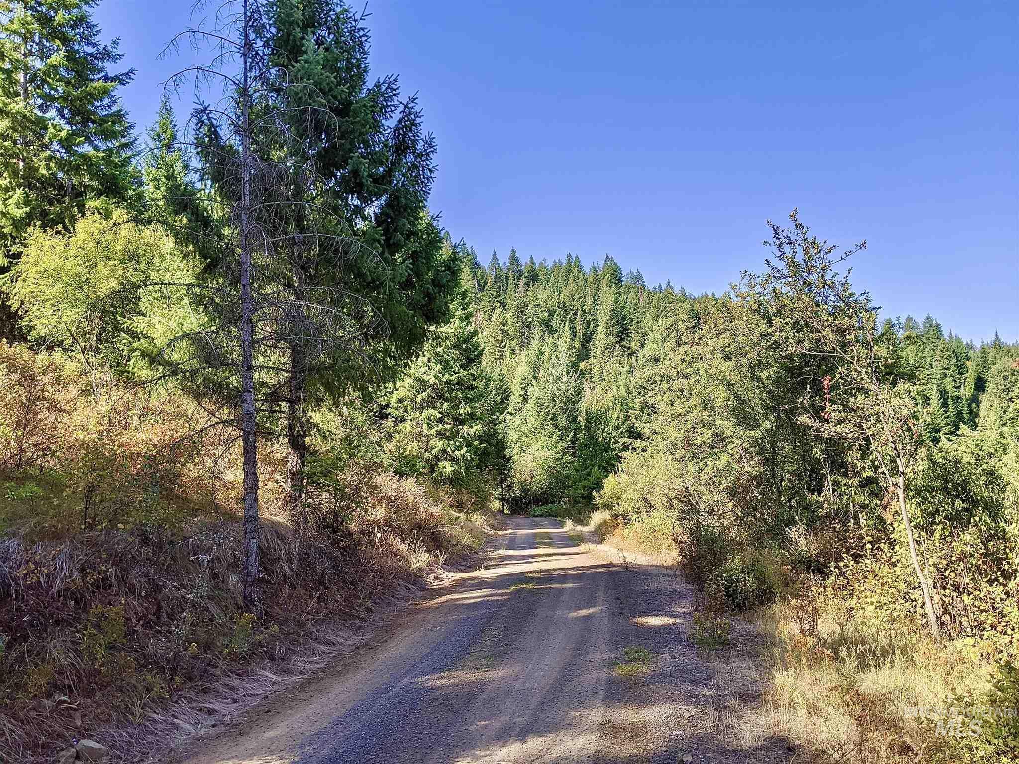Tbd Sun Mt. Rd. Parcel 1 Property Photo