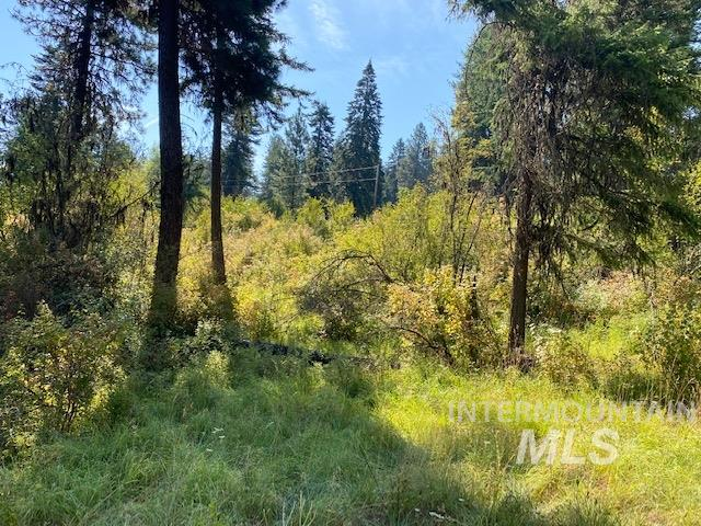 TBD Sun Mt Rd Parcel 4 Property Photo - Orofino, ID real estate listing
